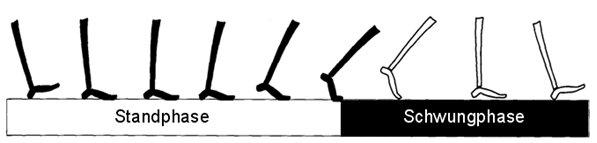 gangphasen